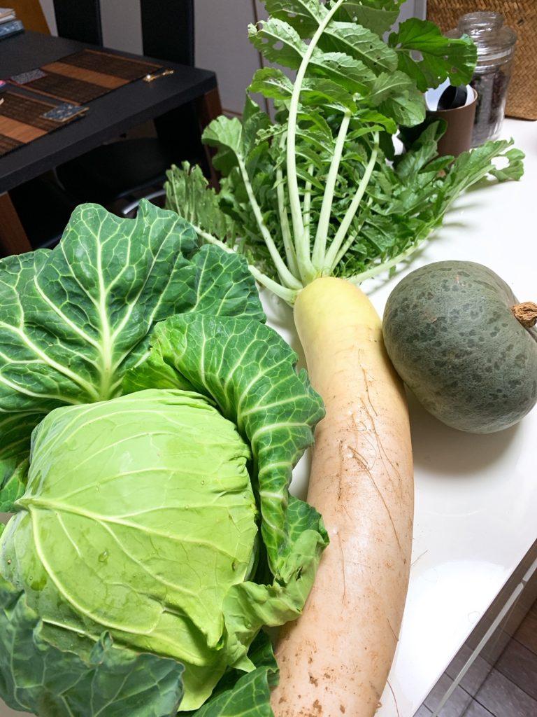 オーガニック,無農薬野菜